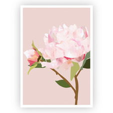 Peonies II Printed Wall Art