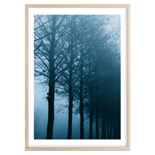 Into The Woods Printed Wall Art