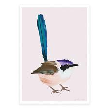 Purple-Crowned Fairy Wren Printed Wall Art