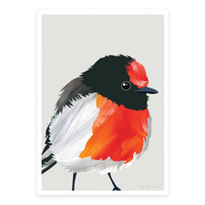 Red Capped Robin Printed Wall Art