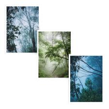 Bushlands Printed Wall Art Triptych