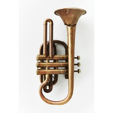 Brass Trumpet Print