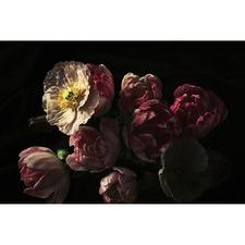 Elizabeth Florals Canvas