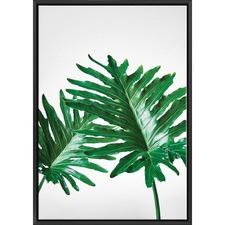 Philodendron Leaf I Print