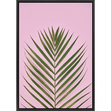 Golden Cane Palm Print