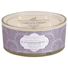 Buy 3 selected candles & save an extra 20%