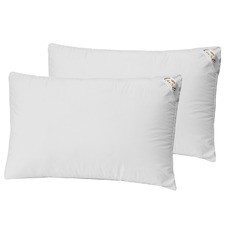 Superior Support Cotton High & Firm Pillows (Set of 2)