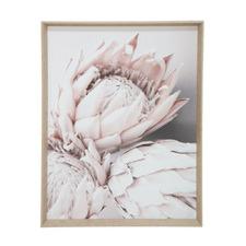 Mixed Protea Natural Framed Canvas Wall Art