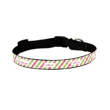 Lime and Pink Picnic Time Collar