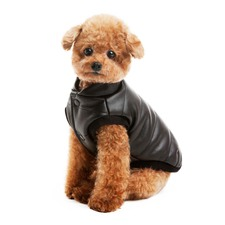 Sleek Black Dog Vest