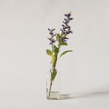 Faux Salvia in Glass Bottle
