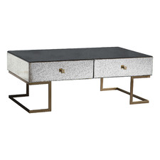 Brass Saunder Glass & Metal Coffee Table with Storage