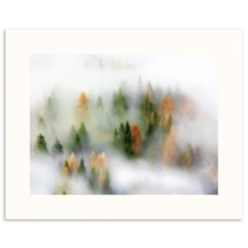 Autumn Cloud Wall Art