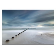 T Photographic Art Print