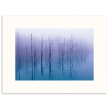 Blue Pond II Wall Art