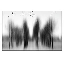 Tree Architecture Photographic Art Print