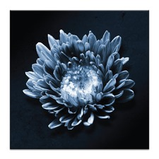 Blue Flower Printed Wall Art