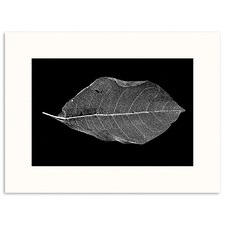 Life of Leaf Printed Wall Art