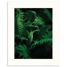 Shades of Green Printed Wall Art
