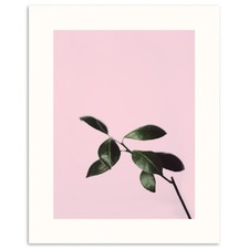 Musk Twig Printed Wall Art