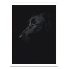 Black Dog Printed Wall Art