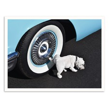 Retro Hound Printed Wall Art