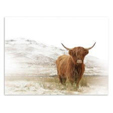 Yak Printed Wall Art