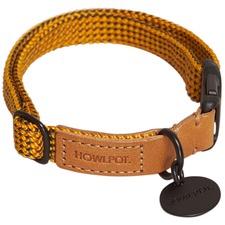 Yellow Jacket We Are Tight Ribbon Dog Collar