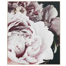 Blush Petals Framed Canvas Wall Art