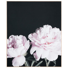 Pair Of Peonies Framed Canvas Wall Art
