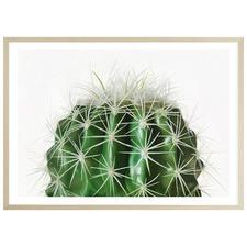 Cactus Printed Wall Art