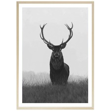 Black & White Elk Printed Wall Art