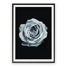 Blue Silver Rose Printed Wall Art