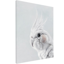 Cockatiel Printed Wall Art