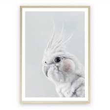 Cockatiel Printed Wall Art