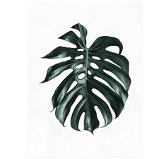 Green Monstera Leaf Printed Wall Art