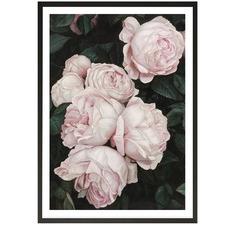 Pink Roses Printed Wall Art