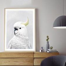 White Cockatoo Printed Wall Art