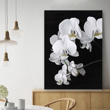 Orchid Printed Wall Art