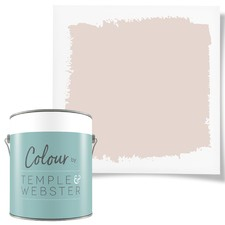 Studio Coloured Interior Paint