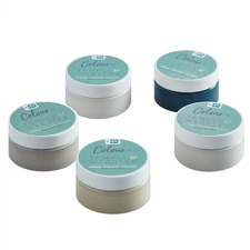 Elegant Classics Interior Paint Sample Pots & Brush