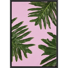 Philodendron Leaf II Print