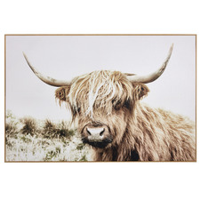 Shaggy Cow Framed Canvas Wall Art