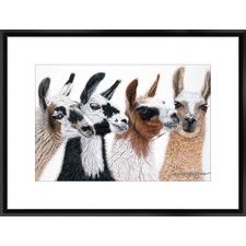 Peruvian Visitors Framed Print