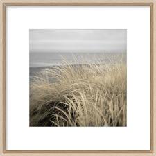 Tuscan Dunes Framed Print
