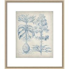 Blue Fresco Floral II Framed Print