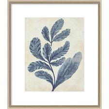 Indigo Blue Seaweed IIA Framed Print