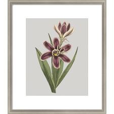 Floral Gems III Framed Print
