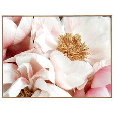Bright Blooms Framed Canvas Wall Art