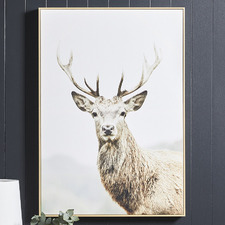Curious Deer Framed Canvas Wall Art